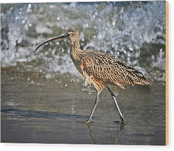 Wood Print featuring the photograph Curlew And Tides by William Lee
