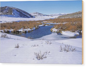 Currant Creek On Ice Wood Print by Chad Dutson