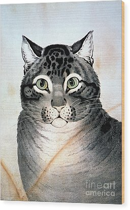 Currier And Ives Cat Wood Print by Granger