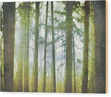 Curtain Of Morning Light Wood Print
