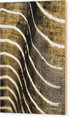 Curves And Folds Wood Print