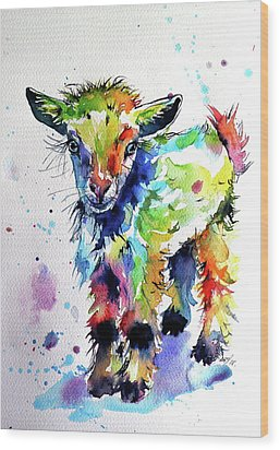 Cute Baby Goat Wood Print by Kovacs Anna Brigitta