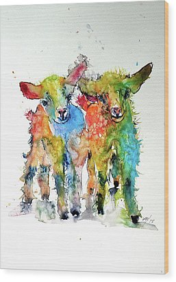 Cute Baby Goats Wood Print by Kovacs Anna Brigitta