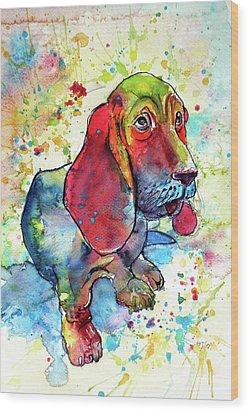 Wood Print featuring the painting Cute Basset Hound by Kovacs Anna Brigitta