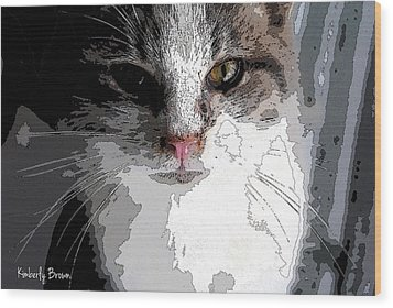 Cute Kittie Wood Print