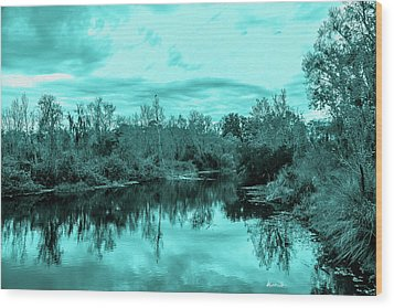 Wood Print featuring the photograph Cyan Dreaming - Sarasota Pond by Madeline Ellis