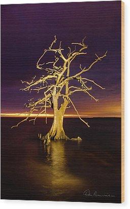 Cypress At Sunset 2860 Wood Print