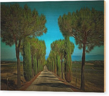 Cypress Avenue Wood Print by Dorothy Berry-Lound