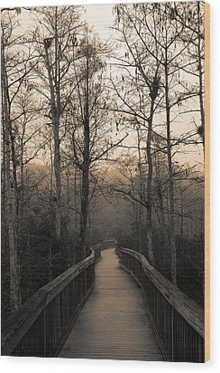 Cypress Boardwalk Wood Print by Gary Dean Mercer Clark