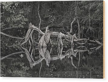 Wood Print featuring the photograph Cypress Design by Steven Sparks