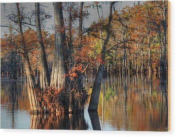 Cypress Group  Wood Print by Ester  Rogers