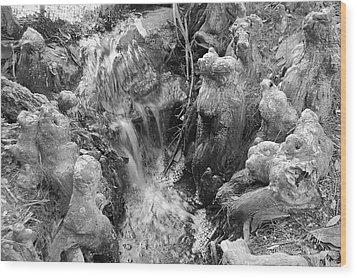 Cypress Knees II Wood Print by Suzanne Gaff