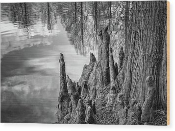 Wood Print featuring the photograph Cypress Knees In Bw by James Barber