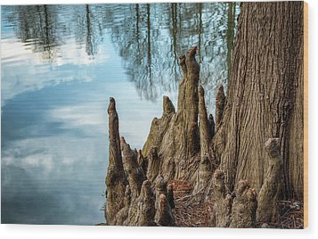 Wood Print featuring the photograph Cypress Knees by James Barber