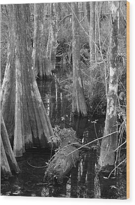 Cypress Pond Wood Print by Juergen Roth