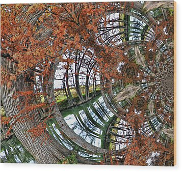 Wood Print featuring the digital art Cypress Reverie by Wendy J St Christopher