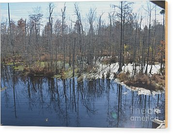 Cypress Swamp Wood Print by Gordon Mooneyhan