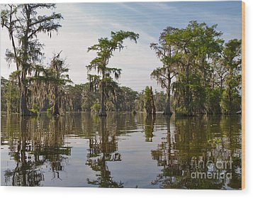 Cypress Trees And Spanish Moss In Lake Martin Wood Print by Louise Heusinkveld