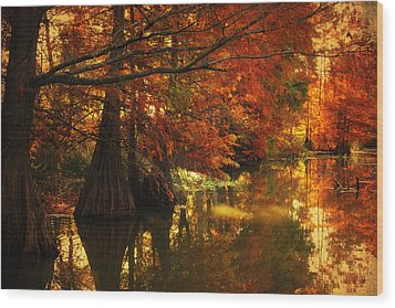 Cypress Trees In The Misy Morning Wood Print by Iris Greenwell