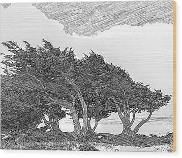Cypresses Wood Print