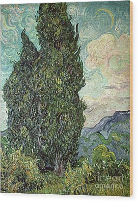 Cypresses Wood Print by Vincent Van Gogh
