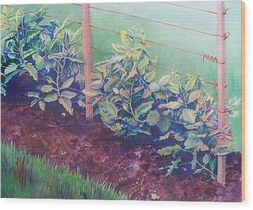 Daddy's Bean Row Wood Print by Tina Farney
