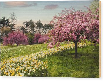 Wood Print featuring the photograph Daffodil Heaven by Jessica Jenney