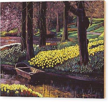Daffodil Park Wood Print by David Lloyd Glover