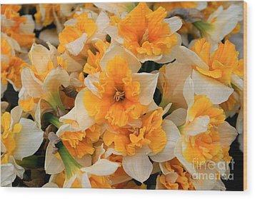 Daffodils Carpet Wood Print by Valia Bradshaw