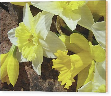 Daffodils Flower Bouquet Rustic Rock Art Daffodil Flowers Artwork Spring Floral Art Wood Print by Baslee Troutman