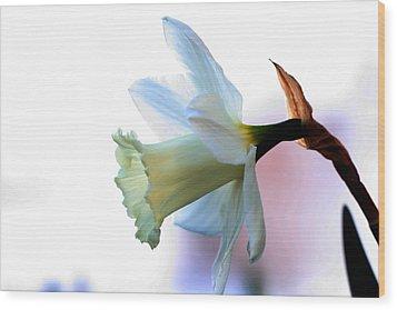 Daffy Wood Print by Doug Norkum
