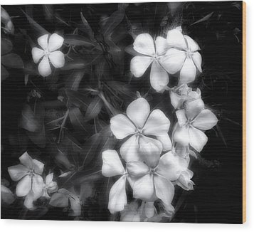 Dainty Blooms - Black And White Photograph Wood Print by Ann Powell