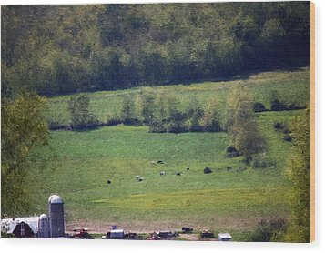 Dairy Farm In The Finger Lakes Wood Print by David Lane