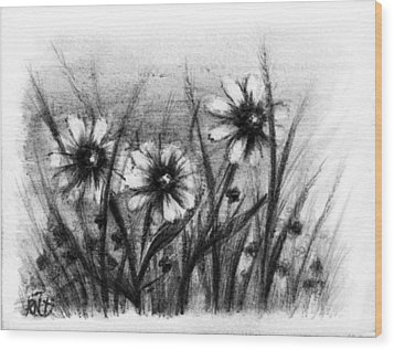Daisies Wood Print by Rachel Christine Nowicki
