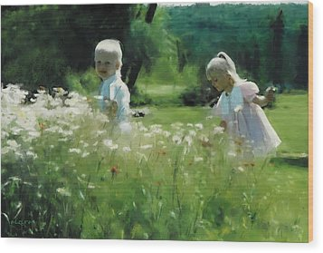 Daisy Field Of Innocents Wood Print by Elzire S