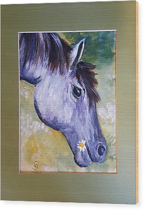 Daisy The Old Mare     52 Wood Print