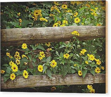 Daisy's Fence Wood Print
