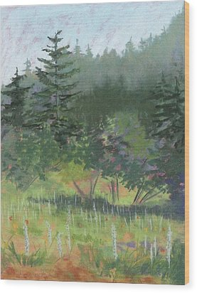 Dale Creek Meadow Wood Print
