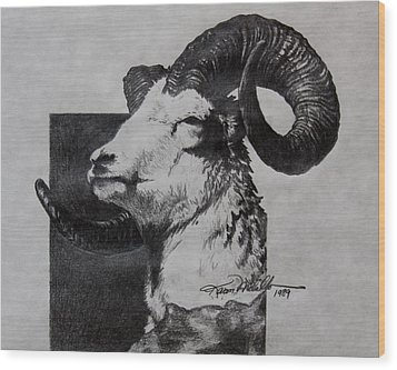 Dall Ram Wood Print by Karon Melillo DeVega