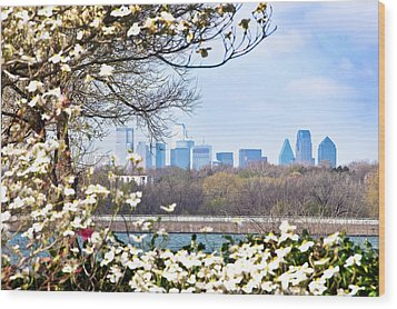 Dallas Through The Dogwood Flowers Wood Print by Tamyra Ayles
