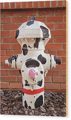 Wood Print featuring the photograph Dalmation Hydrant by James Eddy