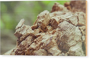 Damaged Wooden Beam Close Up Wood Print