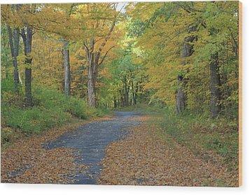 Dana Common Road In Autumn Quabbin Reservoir Wood Print by John Burk