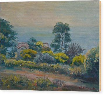 Dana Point Overlook Wood Print