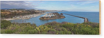 Wood Print featuring the photograph Dana Point Panoramic by Cliff Wassmann