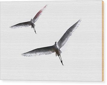 Dance Of The Egrets Wood Print