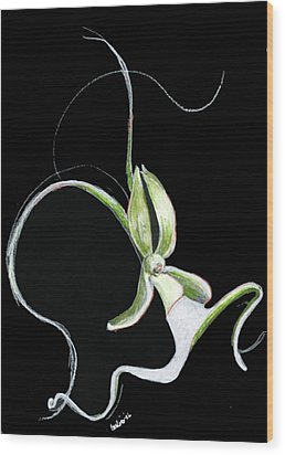 Dance Of The Ghost Orchid Wood Print by Carliss Mora