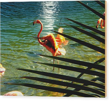Wood Print featuring the painting Dancing Flamingo by Yolanda Rodriguez