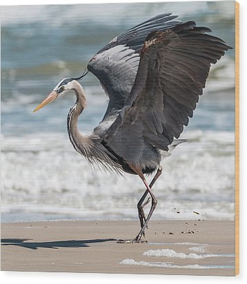 Dancing Heron #2/3 Wood Print by Patti Deters