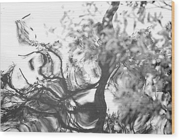 Wood Print featuring the photograph Dancing Leaves by Linda Geiger